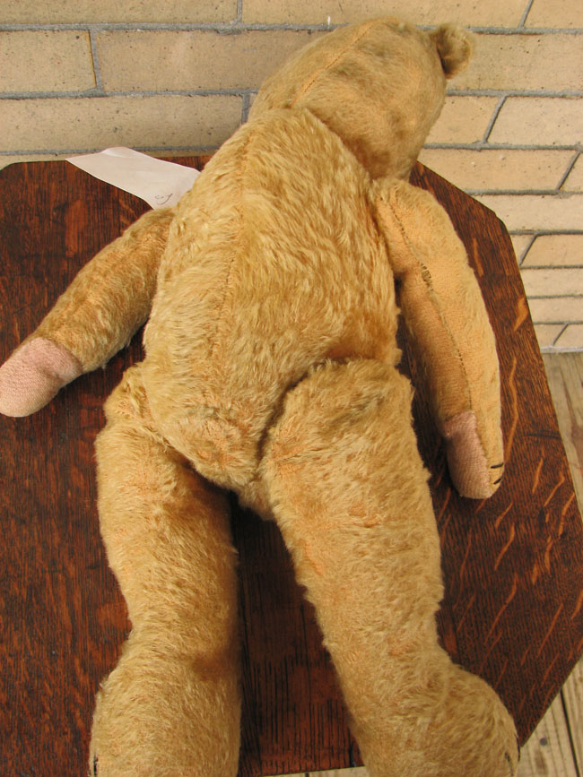 Large  Teddy Bear  |  F122